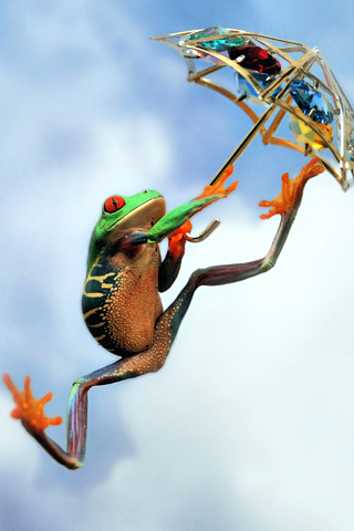 Frog Leap iPod Touch Wallpaper