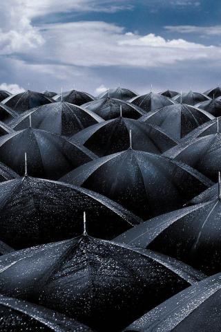 Umbrellas iPod Touch Wallpaper