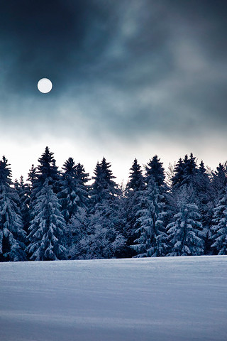 Winter Full Moon iPod Touch Wallpaper