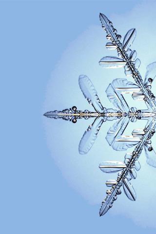 Snowflake iPod Touch Wallpaper