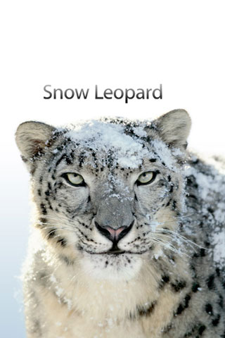 Snow Leopard iPod Touch Wallpaper