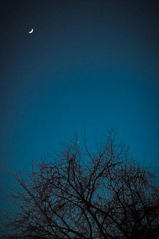 Moonlight iPod Touch Wallpaper