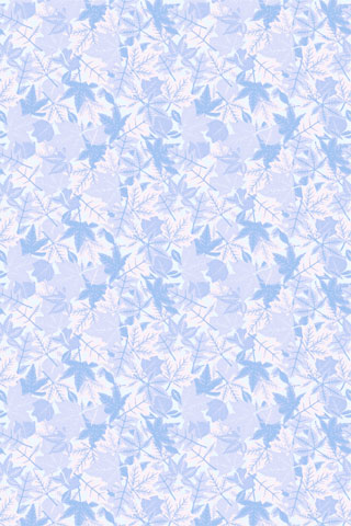 Ice Leaves iPod Touch Wallpaper