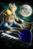 Three Keyboard Cat Moon iPod Touch Wallpaper