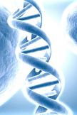 DNA iPod Touch Wallpaper