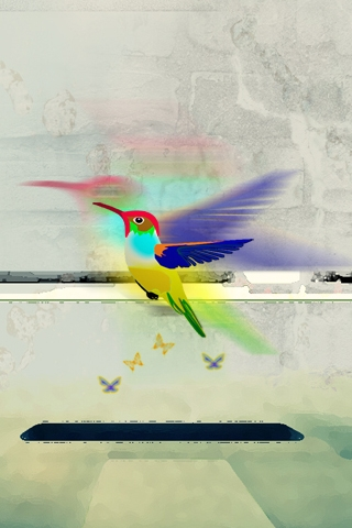 Hummingbird iPod Touch Wallpaper