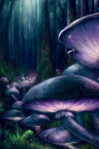 Wild Mushroom iPod Touch Wallpaper